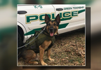 P-GREEN TWP K9.transfer_frame_496.png