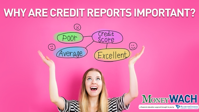 MoneyWACH-Credit Reports