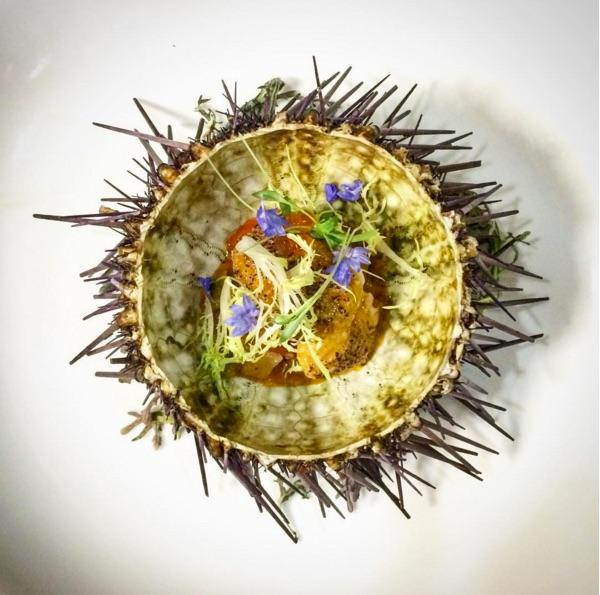 Smoked heirloom, persian lime, cultured cauliflower panna cotta, torched uni. (Image: @maximillianpetty / Instagram)