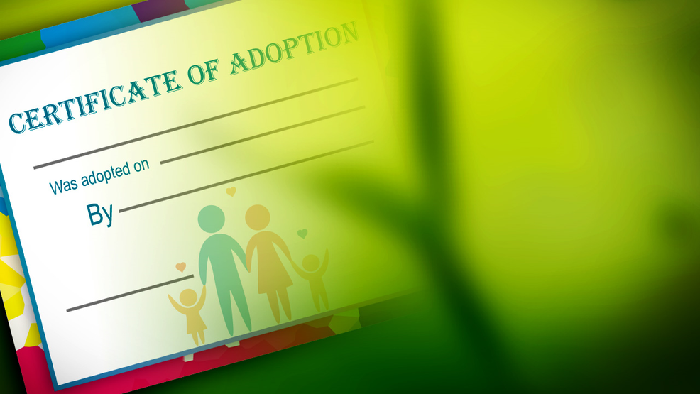 New South Carolina Law Opens Birth Records To Adult Adoptees Wciv