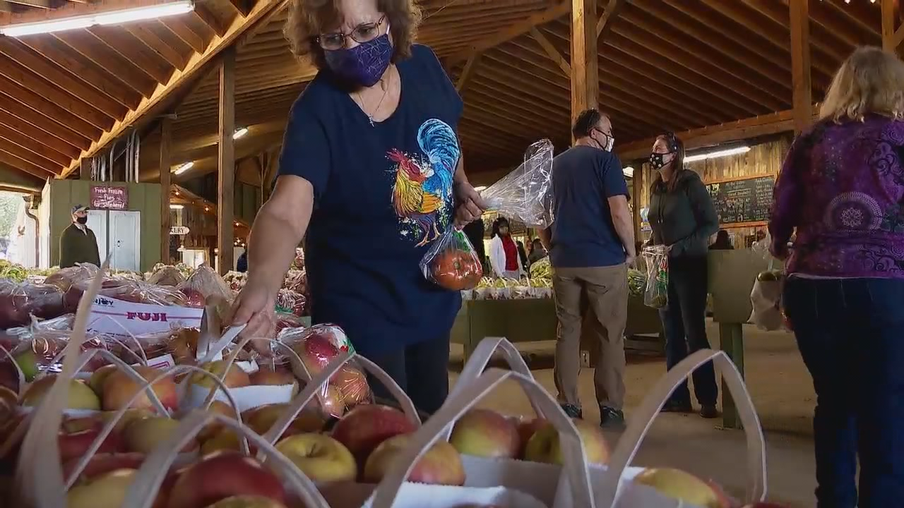 Comfortable fall days, leaf season and Halloween usually draw out the crowds, and this year is no exception, especially at Sky Top Orchard in Henderson County. (Photo credit: WLOS Staff)