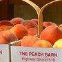 Around 90 percent of Porter peach crop destroyed by last freeze