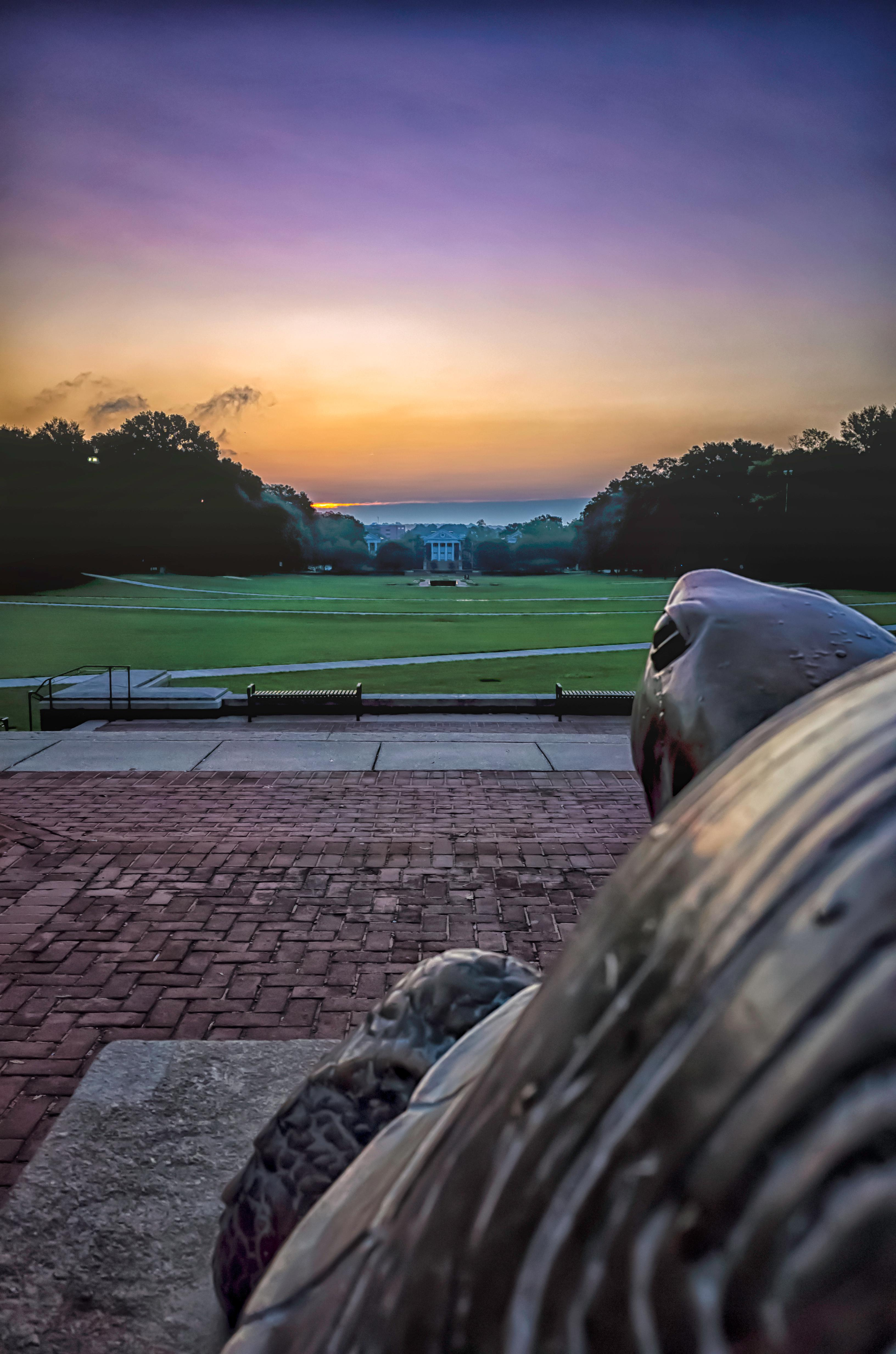 Testudo overlooking the mall at the University of Maryland, College Park. Taken on my way to work, September, 2017. (Image: Adam Brockett)