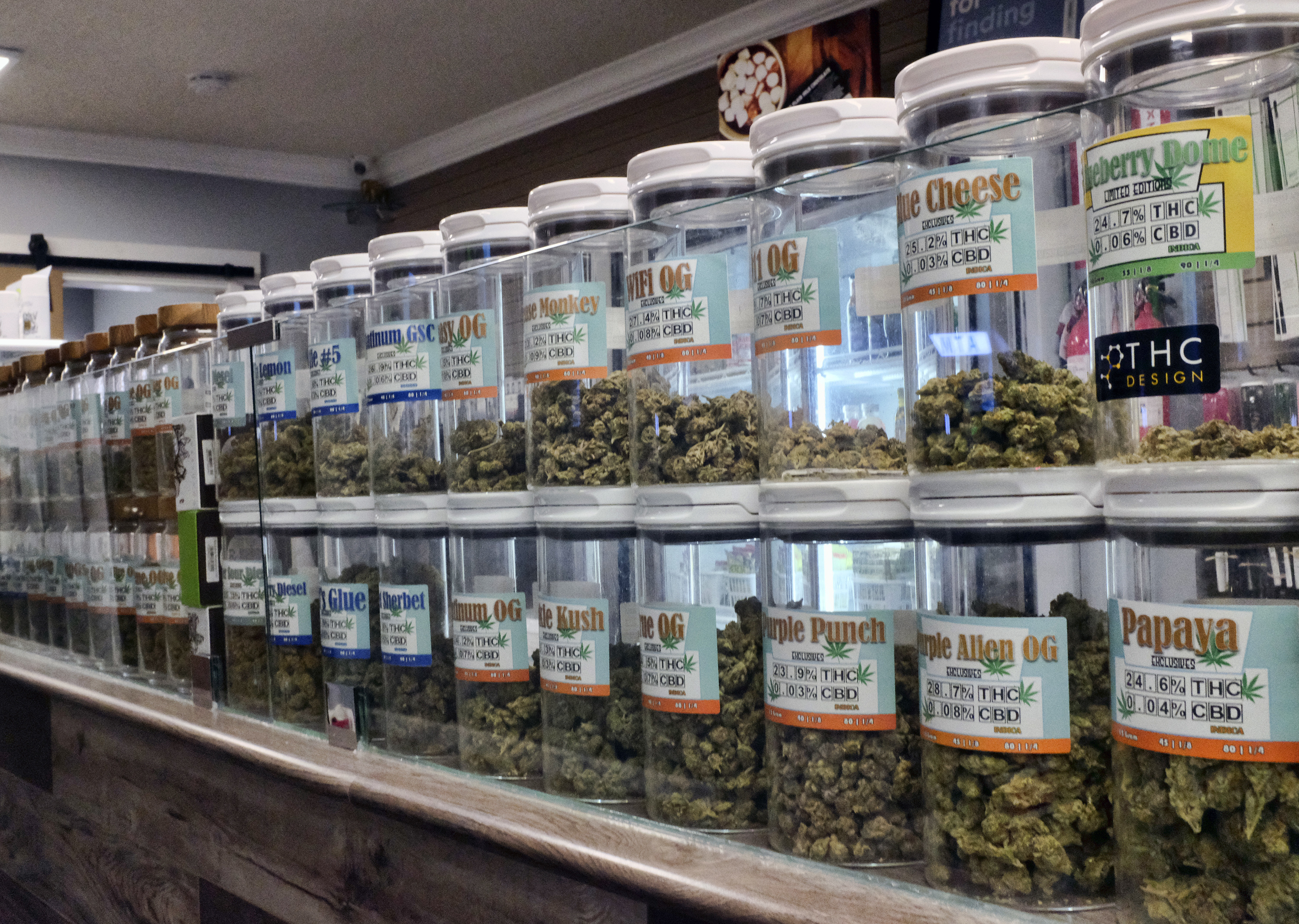 FILE - This Friday, Nov. 3, 2017 photo shows jars of medical marijuana on display on the counter of Western Caregivers Medical marijuana dispensary in Los Angeles. There will be no legal pot party in Los Angeles on Jan. 1. California kicks off recreational sales on New Year's Day, becoming the largest state in the nation with legal cannabis for adults. But Los Angeles officials announced Friday, Dec. 22, 2017, that dispensaries in the city won't be part of the celebration. The city won't begin accepting applications to sell legal recreational pot until Jan. 3, 2018, and it could take weeks before those businesses are properly licensed with the city and state. (AP Photo/Richard Vogel, File)