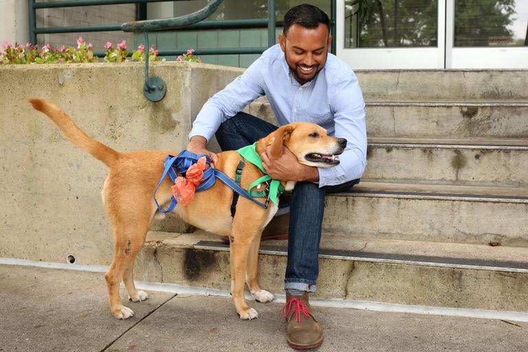 Ian is a 38-year-old technical advisor living in Georgetown. He is looking for a someone who is attractive, honest, trustworthy and mature. // Buck is a 5-year-old lab mix who is looking for a home with a dog friend. He is available for adoption through Lucky Dog Animal Rescue. (Amanda Andrade-Rhoades/DC Refined)