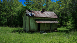 PHOTOS: Abandoned NC site where 'Hunger Games' District 12 was filmed