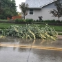 Trees down, other damage in Omaha metro because of storm