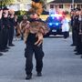 Connecticut police department saying goodbye to K9 officer
