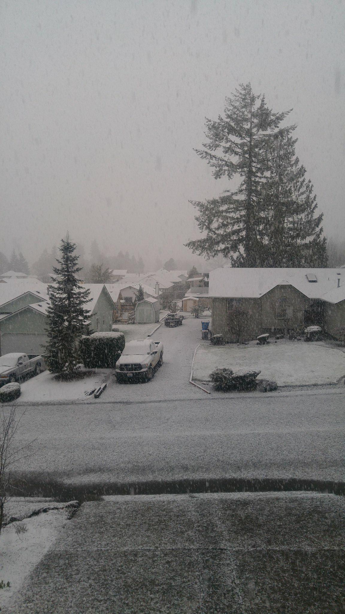 Snow in Chehalis. (Photo: Courtesy of Denis Faber)<p></p>