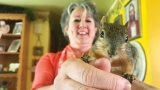 Furry squirrel rescued, adopted by third-grade Idaho teacher