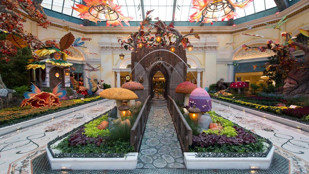 Bellagio in Las Vegas unveils new conservatory autumn theme