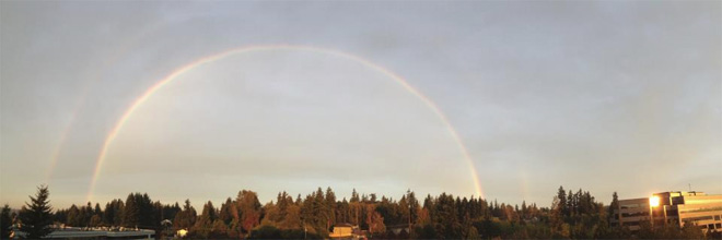 Photo by Matthew Irby in Lynnwood.
