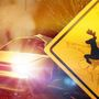 One man dies after car collides with deer in Cleburne County