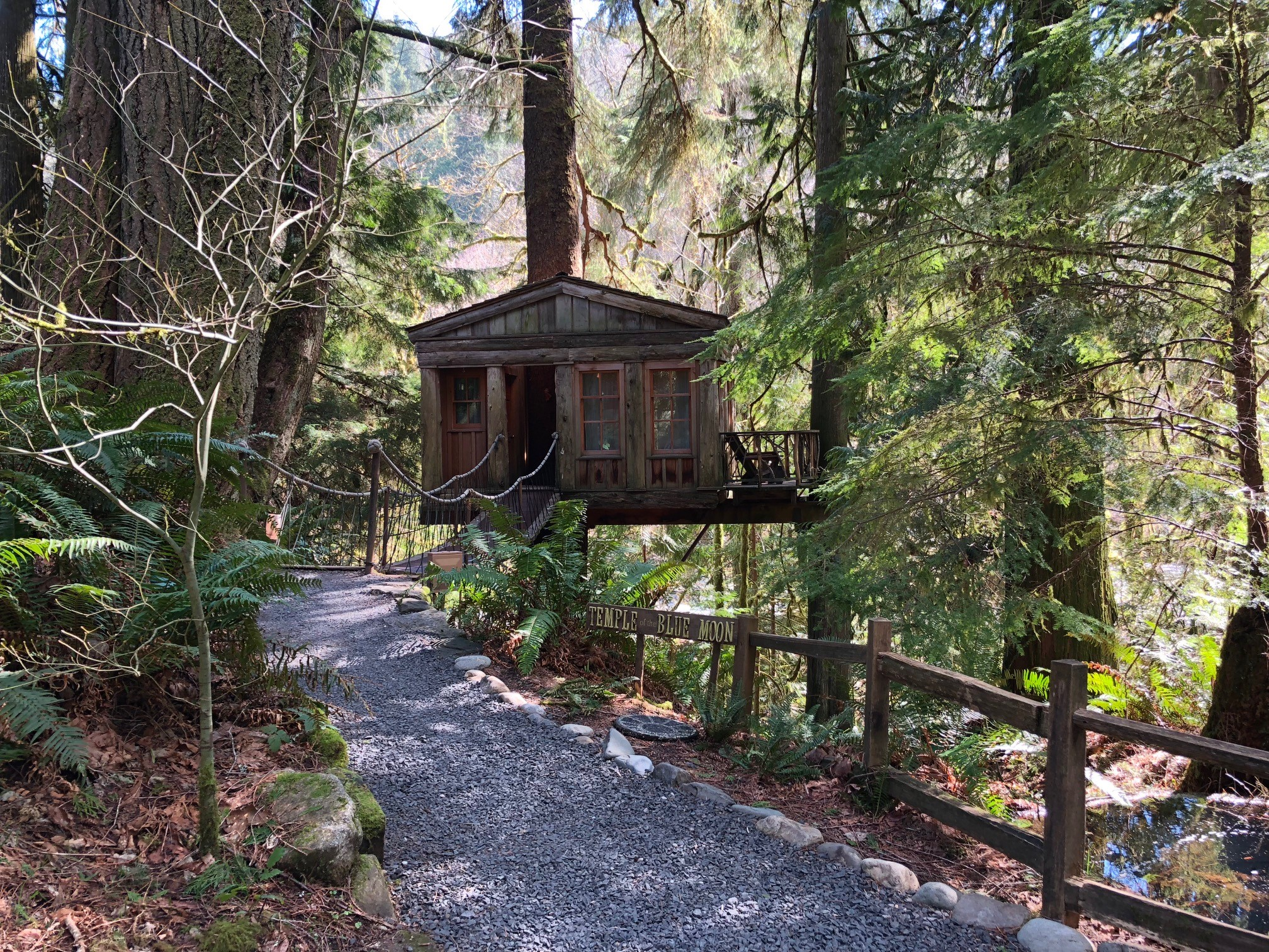 Pete Nelson, Master Treehouse Builder and star of the TV show Treehouse Masters has created special spots for people among the trees at Treehouse Point, 25 miles east of Seattle. (Photo Credit Seattle Refined)