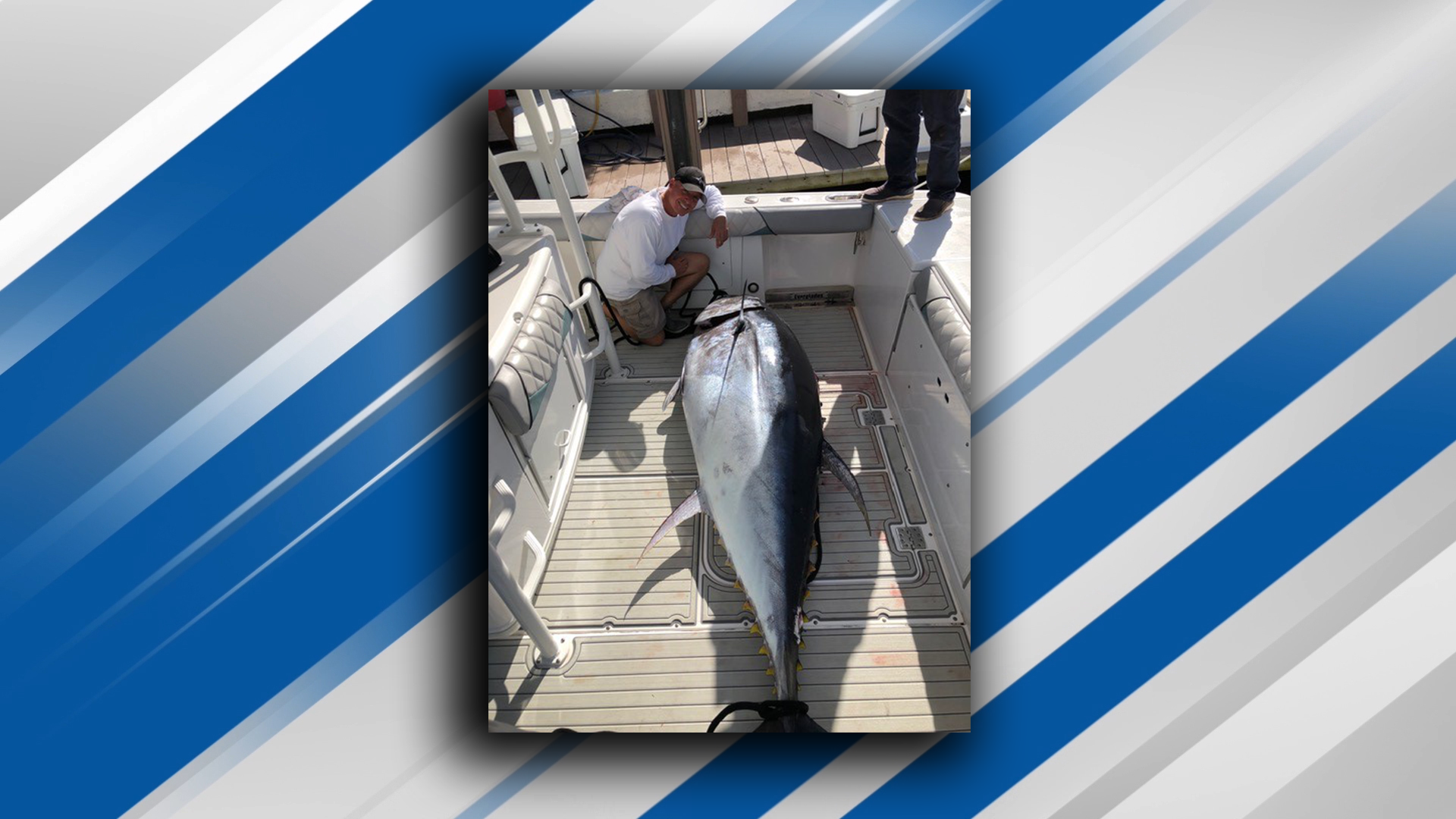 Captain Mike Busse of Reel Dusky Charters caught an 830 pound Atlantic bluefin tuna off the coast of Boca Raton. (Mike Busse){ }