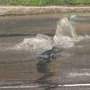 Crews on scene of water main break near Strong Hospital