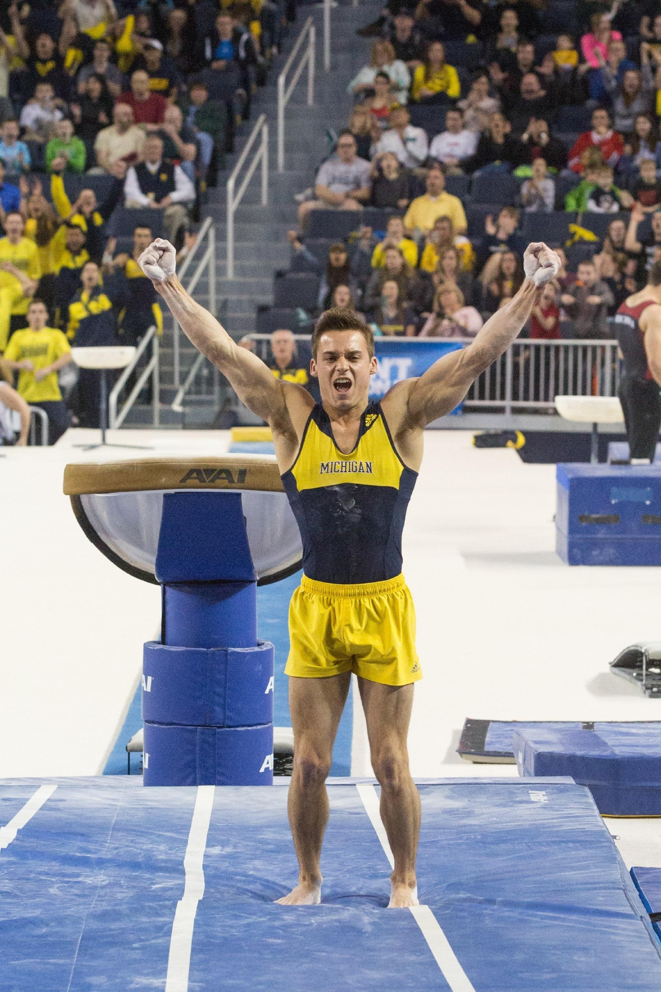 University of Michigan men's Gymnastics team wins the NCAA Championship at the Crisler Arena on April 11, 2014, in Ann Arbor, MI. Photo Credit: Michigan Photo Services.