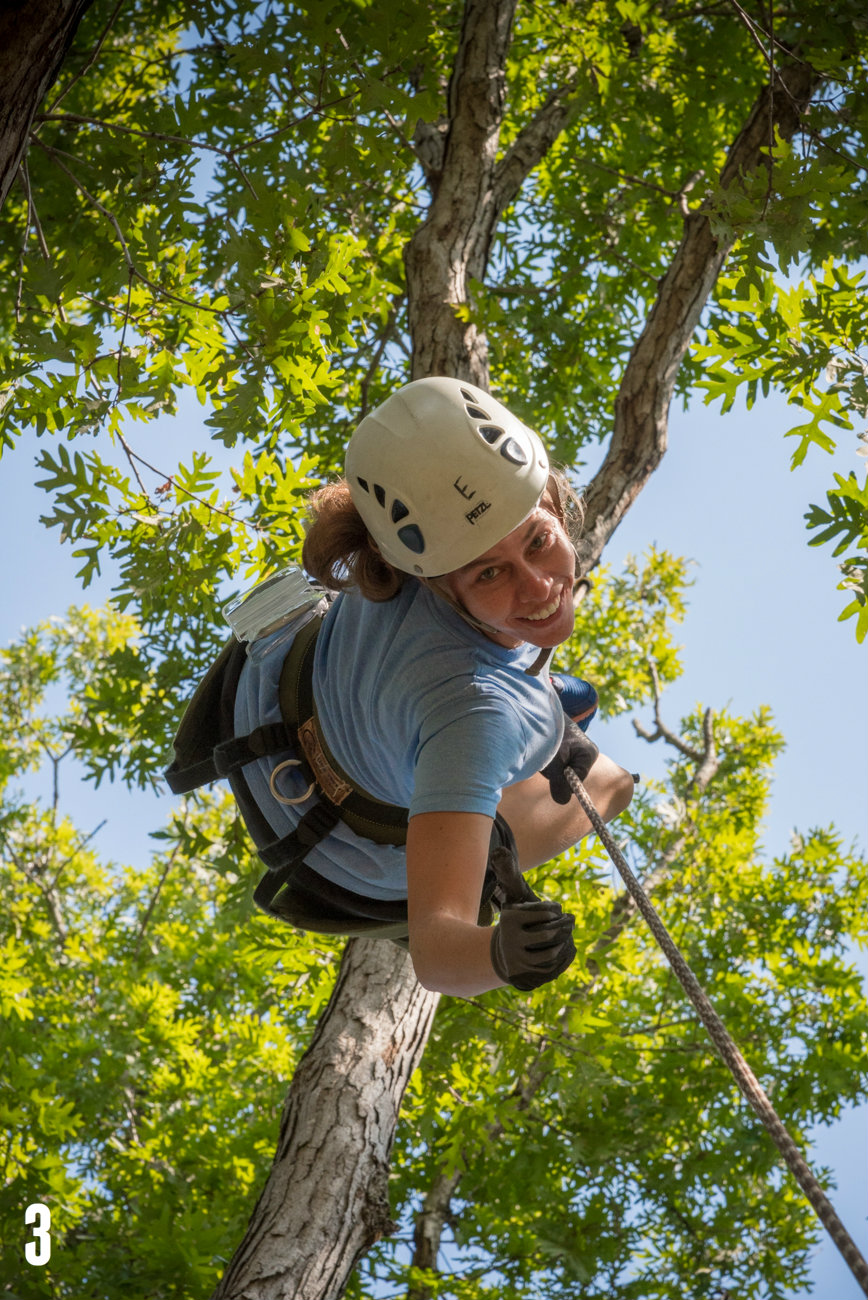 "STORY: ""EarthJoy Teaches You How To Scale 85-Foot Trees & Rappel Down Like Spiderman"" / ADDITIONAL NOTE: EarthJoy Tree Climbing Adventures offers classes in tree climbing at AJ Jolly Park in Alexandria, Ky., Hueston Woods in Oxford, Ohio, and Germantown, Ky. / IMAGE: Phil Armstrong, Cincinnati Refined / Published: 12.25.16"
