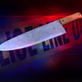 Victim dies after stabbing at Theodore apartments