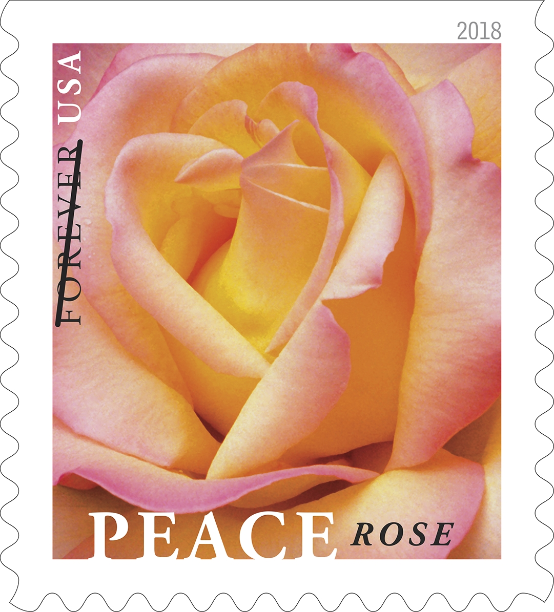 Peace Rose: Peace Rose celebrates one of the most popular roses of all time. The peace rose revolutionized hybrid tea roses with its unique coloring, hardiness and disease resistance. (USPS)