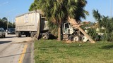 Semi-truck crashes into tree in West Palm Beach
