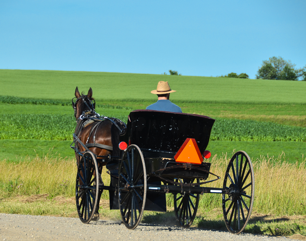 "Story: "" 24 Hours in Amish Country"" /  Location: Ohio Amish Country (east-central Ohio) /  Image: Sherry Lachelle Photography"