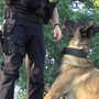 New K9 joins the Harrisburg police force