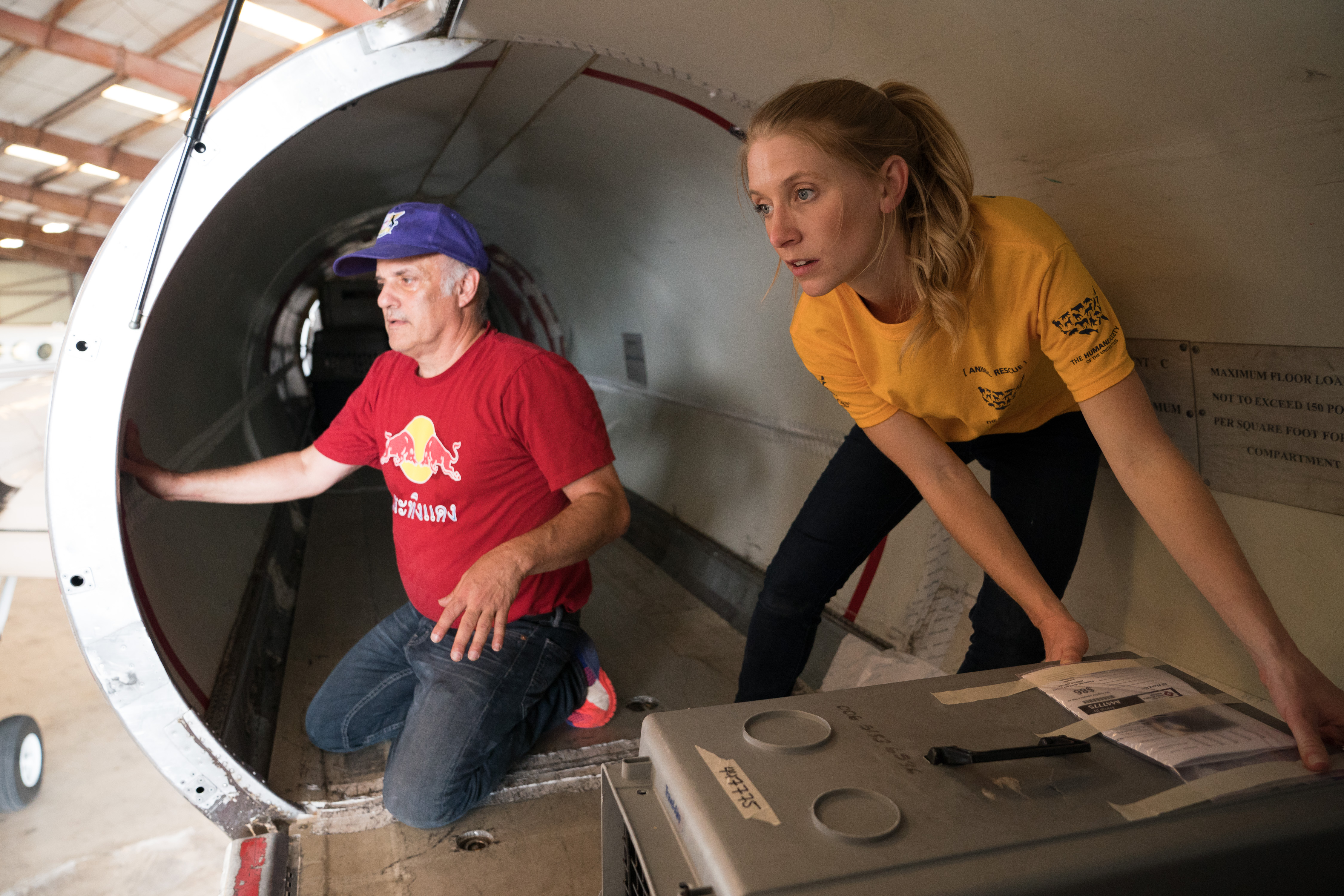 Humane Society of the United States District Leader Nikki Prather, right, and Wings Of Rescue logistics coordinator Ric Browde load dogs onto a plane during The HSUS San Antonio Transport, Tuesday, Aug. 29, 2017, in San Antonio. Approximately one hundred dogs are being transported by Wings of Rescue to the east coast for adoption. (Darren Abate/AP Images for The Humane Society of the United States)