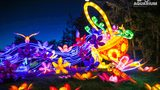 Toledo Zoo to light up nights with lantern exhibit