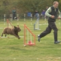 Yakima Valley Kennel Club hosts free dog agility competition in Union Gap