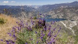 In Your Backyard: Sierra Vista Scenic Byway
