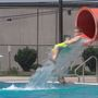 Stay Cool: Beating the heat at the water park