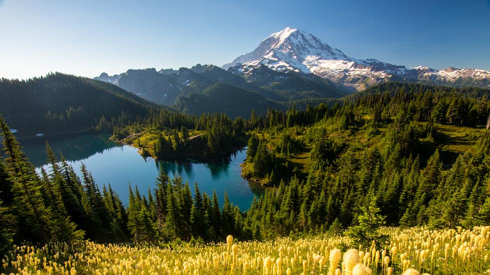 10 lifetime national park passes for seniors about to for Free national park pass for seniors