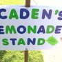 Councilwoman takes a stand to 'Free the Lemonade'