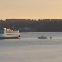 No injuries after State ferry struck by boat