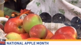 Health in a Handbasket: National Apple Month