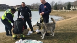 Dogs rescued after falling through hole in pond ice