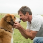 American Humane investigating treatment of dog in film