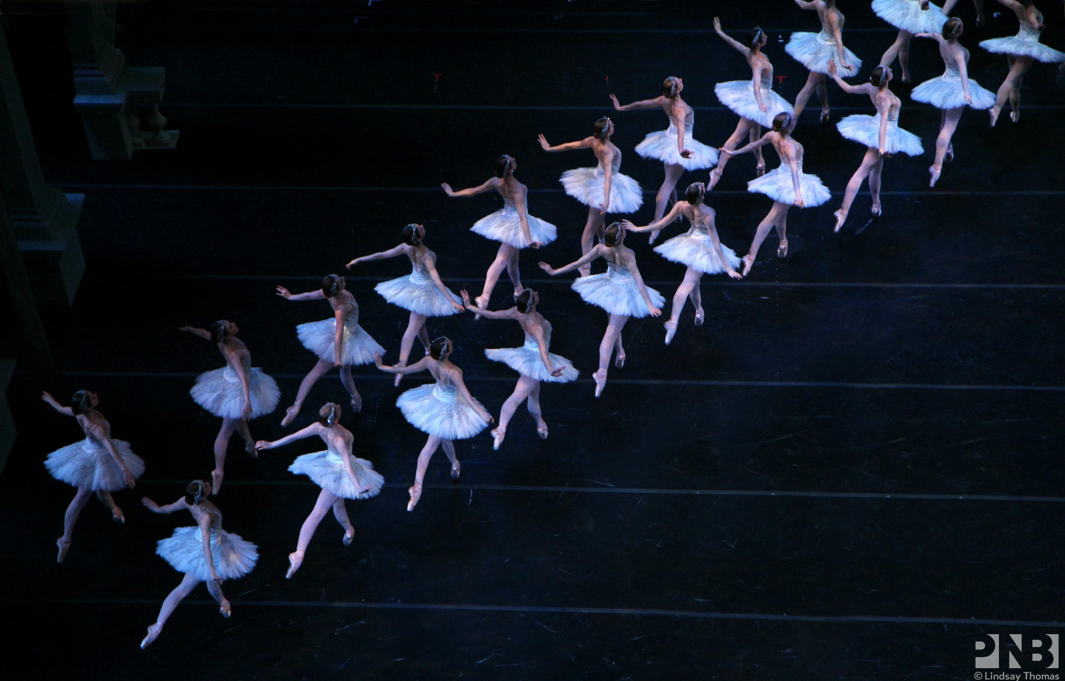 Widely considered to be the greatest classical ballet of all time, Swan Lake is a magnificent production of indescribable beauty. PNB will bring a corps of 24 swans and their queen to life this February. Come for Tchaikovsky's cherished score performed by the mighty PNB Orchestra; stay to watch your favorite ballerina tackle the fiendishly difficult dual role of Odette/Odile. (Image: PNB)