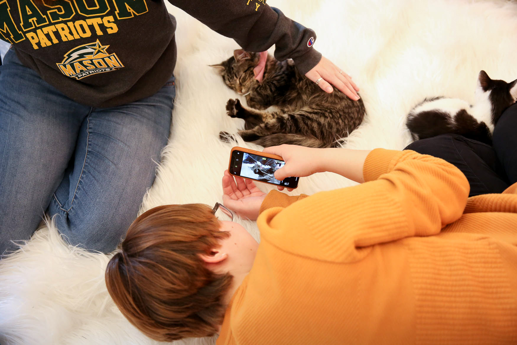 If you're looking to adopt a cat or just want to spend an afternoon playing with kitties, you're in luck. The Kitten Lounge at{ }3109 M St NW is officially open for cat cuddling sessions. The pop-up is an offshoot of Crumbs and Whiskers, a kitten cafe in Georgetown, but it's not just for Instagrammable cat moments; the lounge's mission is to help get kittens from high kill shelters into a loving home. Every spring, shelters are flooded with kittens and The Kitten Lounge aims to adopt out some 500 cats before the pop-up ends. The Kitten Lounge is taking appointments for 15-70 minute kitten cuddling sessions, where you can also apply to adopt a cat. (Amanda Andrade-Rhoades/DC Refined)