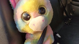 Unicorn abandoned along freeway finds new happy owners