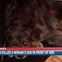 Fairhope woman speaks out after dog is killed by kids with shotgun