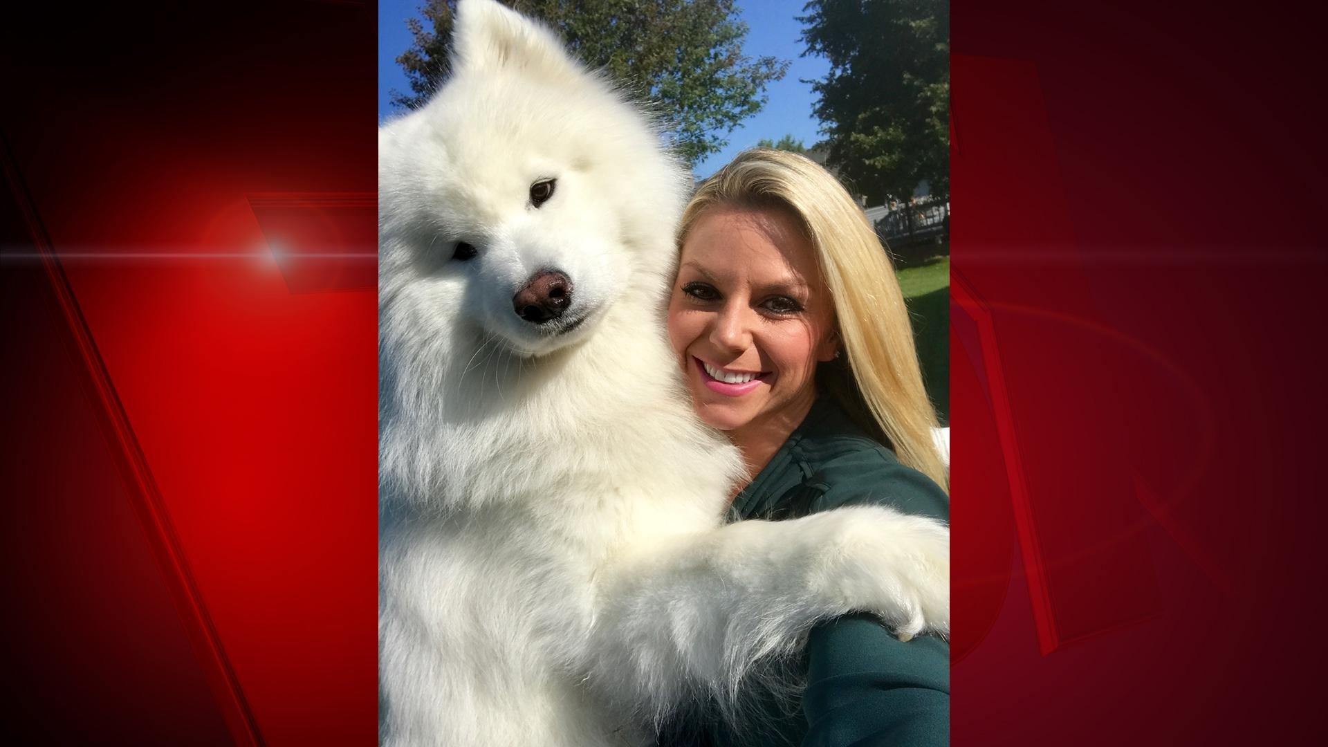 "Meet FOX 11 Good Day Wisconsin reporter Lauren Kalil's dog, Saber. He is a 3-year-old Siberian Samoyed. Lauren says, ""Saber absolutely LOVES the Winter! Unlike his mother, he loves to spend hours playing in the snow and fetching for sticks. The only thing he likes about the summer months is when he's able to cool off in Lake Michigan and play in the waves. He's extremely friendly to anyone he meets and will do almost anything for peanut butter."" (WLUK/Lauren Kalil)"