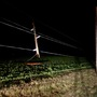 Storm damage leaves 190+ without power in Champaign County