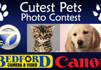 Bedford Cutest Pets Contest