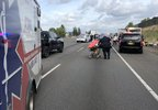 Chase ends in crash on I-205 - Clackamas County Sheriff's Office photo 2.jpg