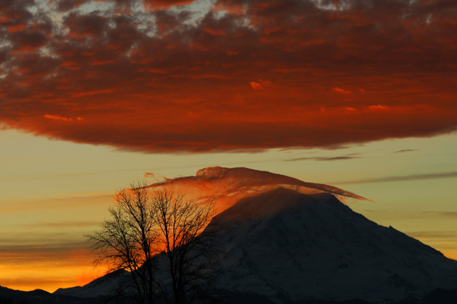 Photo of lenticular cloud at sunrise over Mt. Rainier, taken Jan. 4 by John Meadows, who has had quite a few incredible shots of Mt. Rainier in the weather blog before.