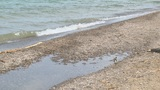 Abandoning beaches ahead of Memorial Day weekend