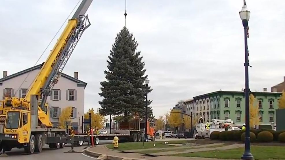 watch troy christmas tree arrives in downtown - Christmas Treee