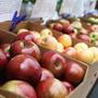2017 Apple Festival has food, fun--and a chance to donate to Harvey victims